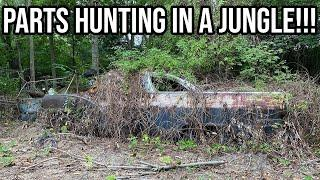 Braving The Jungles Of New Jersey To Rescue Hot Rod Gold!!!