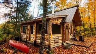 New Build at the Off Grid Log Cabin, Workshop, Root Cellar, Campfire Cooking Wild Game