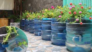 Great invention, DIY flower pots with plastic bottles combined with fish tank
