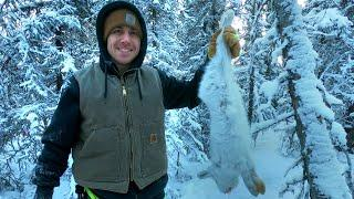 Trapping & Cooking Snowshoe Hare