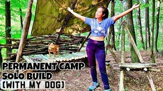 Permanent bushcraft camp, survival shelter building - raised bed - episode 1 (With my dog Moana).