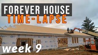 We get a roof and windows! | Week 9 | Home Build Time-Lapse