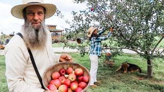 You NEVER PRESERVED APPLES like this!?!  OFF GRID | HOMESTEADING