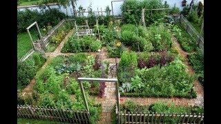 AMG- THE POTAGER GARDEN +100 Amazing Ideas For Growing A Vegetable Garden In Your Backyard