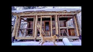 "Cali at the Cabin | My Dog ""Helps"" Me Build an Addition on My Log Cabin"