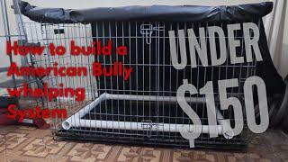 How to DIY Build a Whelping system (Pig Rail) For American Bully for under $150