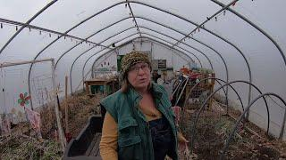 GREENHOUSE and  ROOT CELLAR with HAND PIE LUNCH