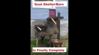 Finished, Turning part of the garage into a goat barn, shelter. part 3