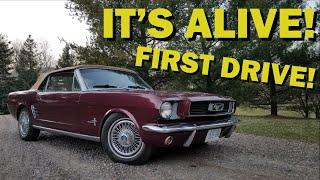"""BUDGET BUILD MUSTANG """"COVID-19,"""" FIRST START (PART 2)"""
