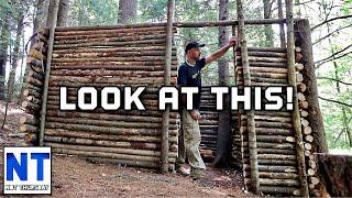 Building a small log cabin with four walls & door frame in the woods NH DIY