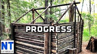 The cabin roof build progress update and getting the frame supports up