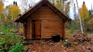 Off Grid Log Cabin: Sealing Logs And Grouse Hunting
